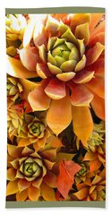 Hen And Chicks - Perennial Beach Towel