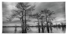 Henderson Swamp Wetplate Beach Towel by Andy Crawford