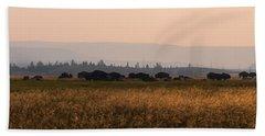 Herd Of Bison Grazing Panorama Beach Towel
