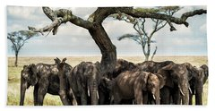 Herd Of Elephants Under A Tree In Serengeti Beach Sheet
