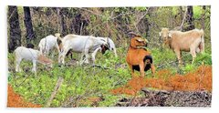 Beach Towel featuring the photograph Herd Of Goats In Osage County by Janette Boyd