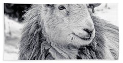 Beach Towel featuring the photograph Herdwick Sheep by Keith Elliott