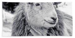Herdwick Sheep Beach Towel by Keith Elliott