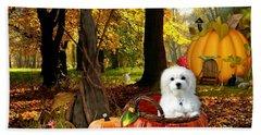 Hermes And Pumpkins Beach Sheet