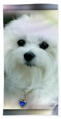 Hermes The Maltese 01 Beach Towel
