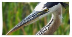 Heron Head Beach Sheet