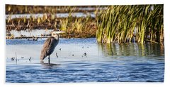 Heron - Horicon Marsh - Wisconsin Beach Towel