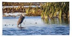 Heron - Horicon Marsh - Wisconsin Beach Sheet