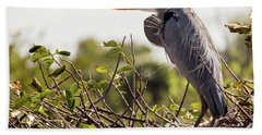 Heron In Nest Beach Towel by Jim Gillen