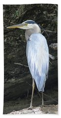Beach Towel featuring the photograph Heron In The Woods by Kathy Kelly