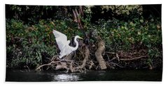 Beach Towel featuring the photograph Heron Landing by Ray Congrove