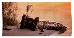 Heron On The Rocks Beach Sheet by Phil Mancuso