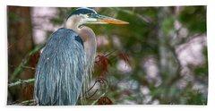 Heron Perched In Tree #2 Beach Sheet