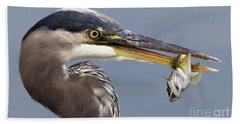 Beach Towel featuring the photograph Herons Appetizer by Sue Harper