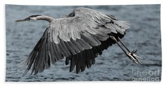 Beach Towel featuring the photograph Herons Flight by Sue Harper