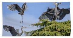 Herons Mating Dance Beach Towel by Keith Boone