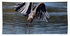 Great Blue Heron In Flight With Fish Beach Towel