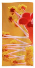 Beach Towel featuring the photograph Hibiscus-2 by David Coblitz