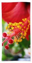 Hibiscus #3 Beach Sheet