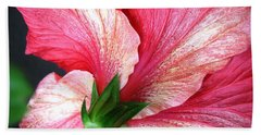 Hibiscus #5 Beach Sheet