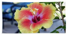 Hibiscus Bloom On The Patio Beach Towel