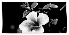 Beach Towel featuring the photograph Hibiscus In The Dark by Lori Seaman