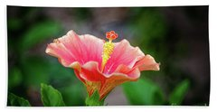 Hibiscus Rosa Sinensis Beach Towel by Michelle Meenawong