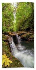 Hidden Falls At Rock Creek Beach Sheet