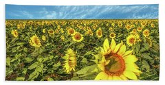 High Plains Sunflowers Beach Towel
