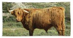 Highland Bull In The Noordhollandse Duinreservaat Beach Towel