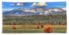 Highland Colorado Beach Towel by Scott Mahon