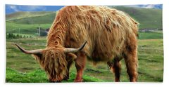 Highland Cow Beach Sheet