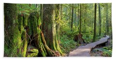 Hiking Trail Through Forest In Lynn Canyon Park Beach Towel