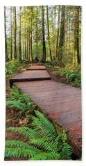 Hiking Trail Wood Walkway In Lynn Canyon Park Beach Towel