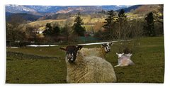 Hill Sheep Beach Towel