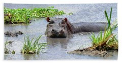 Hippo In The Serengeti Beach Sheet