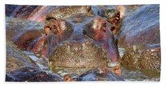 Hippopotamus Beach Towel by Richard Garvey-Williams