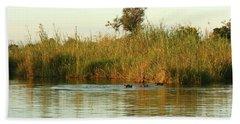 Beach Towel featuring the photograph Hippos, South Africa by Karen Zuk Rosenblatt