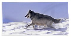 His Majesty Wolf 21m Beach Towel
