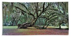 Hofwyl-broadfield Plantation2 Beach Towel