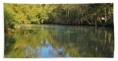 Homosassa River Beach Sheet by D Hackett