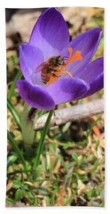 Honey Bee On Crocus  Beach Towel