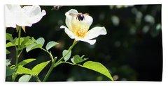 Honey Bees In Flight Over White Rose Beach Towel