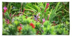 Honey Eater, Bushy Lakes Beach Towel