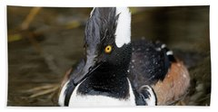 Beach Towel featuring the photograph Hooded Merganser Hanging Out by Sue Harper