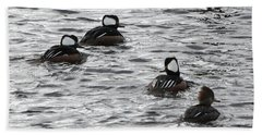 Hooded Mergansers Beach Towel