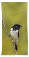Hooded Robin Beach Towel