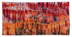 Hoodoo Forest Beach Towel by David Cote
