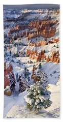 Beach Towel featuring the photograph Hoodoos And Fir Tree In Winter Bryce Canyon Np Utah by Dave Welling