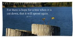 Hope For A Tree Beach Sheet by James Eddy